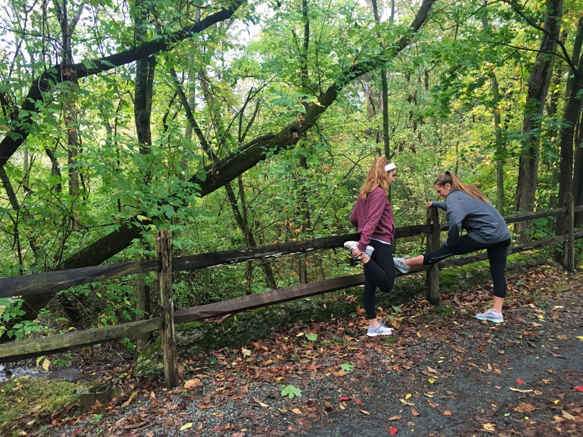 The Perkiomen Trail runs along the eastern edge of campus and leads to Philadelphia. About the Ar...